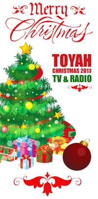 christmastv2013b